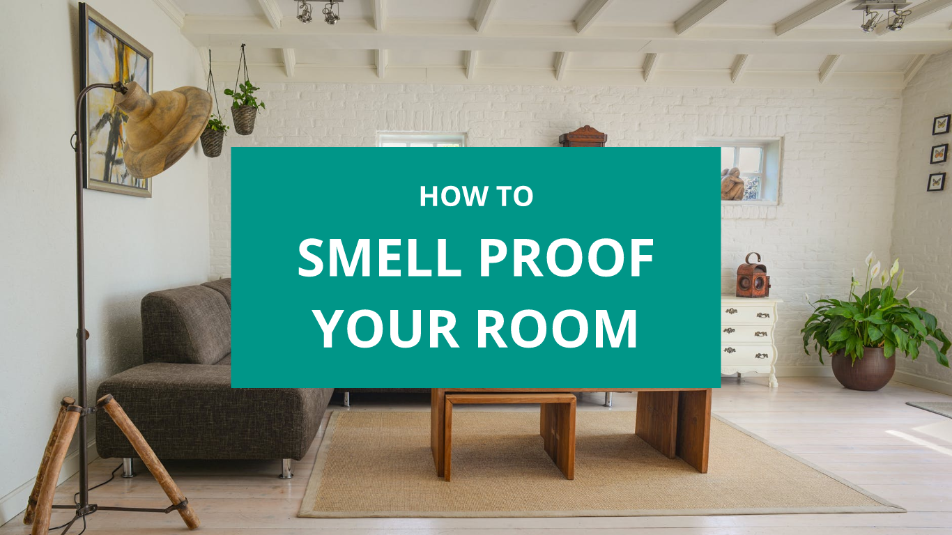 How To Smell Proof Your Room